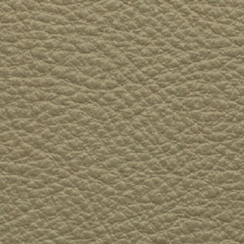 1021_Taupe